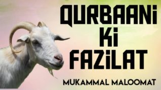 Qurbani ki fazilat