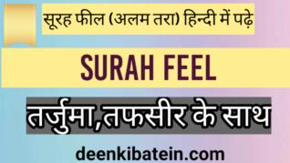 Surah feel in Hindi